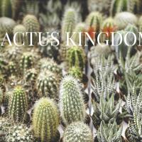 Buyer Beware: Cactuskingdom.ca